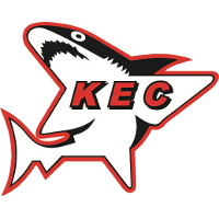 Kölner Junghaie