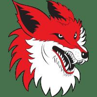 https://api.hockeydata.net/img/icehockey/ebel/team-logos/5520/13203.png